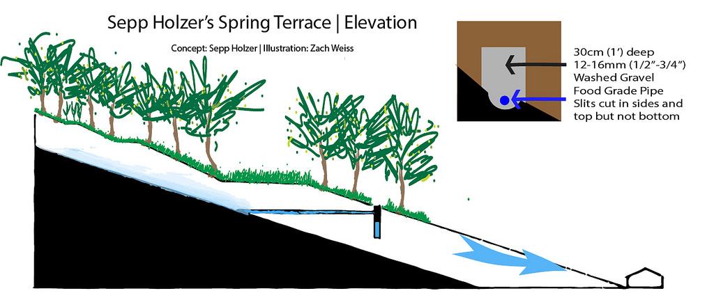 terracespring